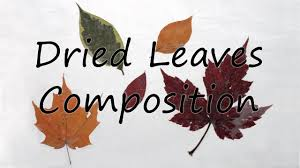 fall craft with dried leaves youtube