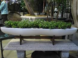 white color and long size for planter design plus small plants