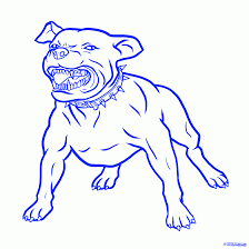 6 how to draw a pitbull dog