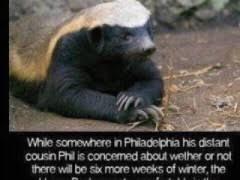 Honeybadger Meme - honey badger meme weknowmemes