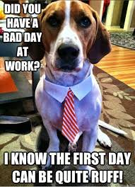 Bad Day At Work Meme - did you have a bad day at work i know the first day can be quite