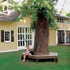 Trees Backyard Backyard Round Bench Diy If You Have Really Old Trees In Your
