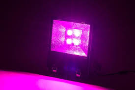 red and blue led grow lights xiros 200w hermetically sealed led grow light with red blue ratio 3