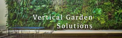 vertical garden vertical garden solutions mybageecha
