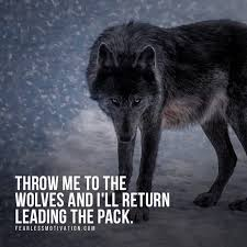 Angry Wolf Meme - 20 strong wolf quotes to pump you up wolves wolfpack quotes