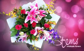 Wholesale Flowers 50 Off Stems Wholesale Flowers Deals Reviews Coupons Discounts