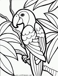 extraordinary idea parrot coloring pages printable for