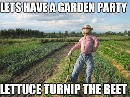 Vegetable Meme - puns vegetables funny puns pun pictures cheezburger