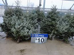 real trees prices balsam hill lighted tree