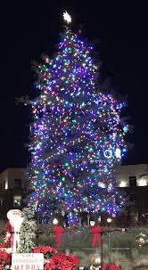 tree fantastics lighting photo inspirations downtown