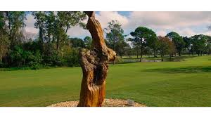 stoneybrook west golf course all square