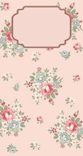 Flower Screen Backgrounds - iphone wallpaper iphone wallpaper pinterest wallpaper phone