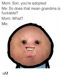 What Does Meme Mean And How Do You Pronounce It - mom son you re adopted me so does that mean grandma is fuckable