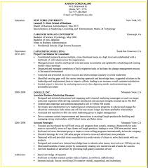 sample business development and consulting resume http