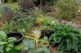 garden ideas tropical gardens on pinterest landscape small loversiq