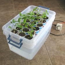 diy self watering herb garden diy self watering transplant tray vegetable gardener