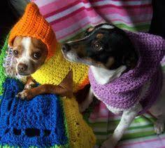 crochet pattern for dog coat how to crochet a sweater for your dog crochet dog sweater fast