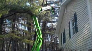 tree trimming service with portable nifty lift nashua nh