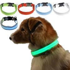 Light Up Dog Collar Usb Rechargeable Flashing Light Up Adjust Safety Nylon Led Dog Cat