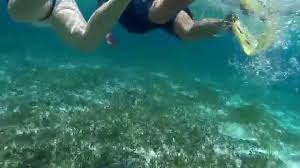 jeep snorkel underwater cozumel 2015 jeep and snorkel excursion at punta sur youtube