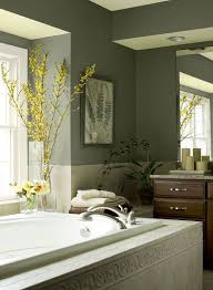 green bathroom ideas rainforest bathroom retreat paint color