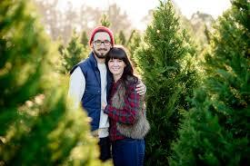 christmas tree portraits christmas lights decoration