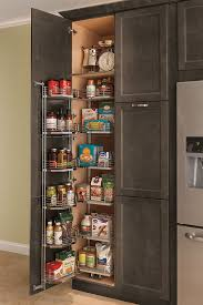 kitchen storage cabinets with doors and shelves thomasville organization pantry unit