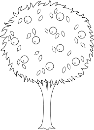 apple tree coloring pages orange tree outline coloring childrens pinterest tree