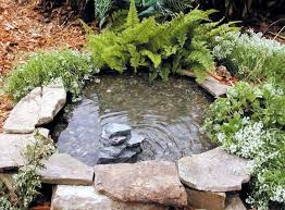 Small Garden Pond Ideas Create A Mini Garden Pond In The Mortar Bed And Replant Diy Idea