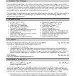 Resume Templates It Professional It Resume Template Top Professionals Resume Templates Samples Free