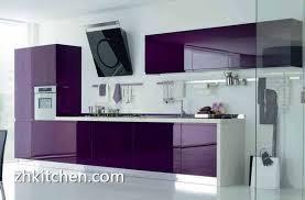 Colour Of Kitchen Cabinets Acrylic Kitchen Cabinets Stupendous Cabinet Design