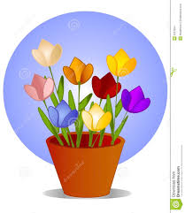 flowers in pot 73 enchanting ideas with colored tulips flowers in