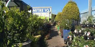 barrow u0026 bench mitre 10 malvern in the garden with kim syrus