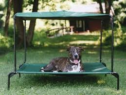 Pet Canopy Bed Canopy Bed Canopy Bed Princess 2 Pet Pink Canopy Bed