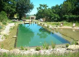 Backyard Swimming Ponds by 297 Best Ponds And Pools Images On Pinterest Natural Pools