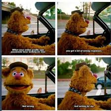 Bear Stuff Meme - fozzie bear meme bear best of the funny meme