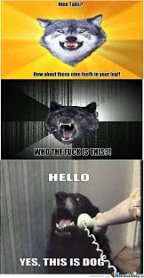 Crazy Wolf Meme - insanity wolf memes best collection of funny insanity wolf pictures