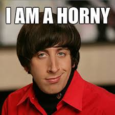 Howard Wolowitz Meme - howard wolowitz in the big bang theory by hushbitchezz meme center