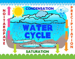 make a science fair project poster ideas water cycle weather