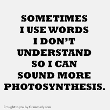 Grammarly Memes - grammarly meme google search quotes pinterest meme
