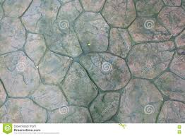 round stone with moss floor texture background patio pavers cir