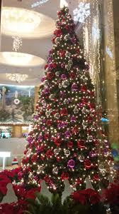 file hk cwb regal hong kong hotel 富豪香港酒店 tree n ceiling