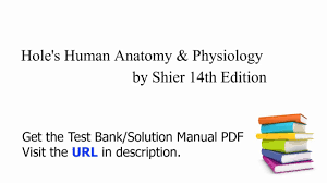 Hole Anatomy And Physiology 13th Edition Human Anatomy And Physiology Practice Test At Best Way To Study