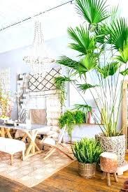 island themed home decor island themed home decor s hawaiian themed room ideas thomasnucci