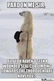 Dancing Bear Meme - polar bear memes image memes at relatably com