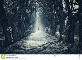 dark halloween background halloween mystical background with dark forest stock photo image