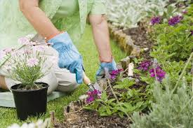 clever design how to plant a flower garden beautiful how to plant