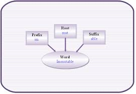 what is the latin root meaning light what are word parts root words prefix and suffixes english