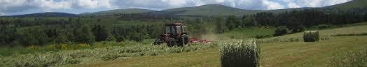 cfe chambre agriculture s enregistrer au c f e chambre d agriculture de la lozère