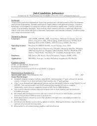 Front End Developer Resume Sample by Resume Example For Web Developer Templates